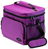 Best Picnic Plus Lunch Boxes - Insulated Lunch Bags for Women | Lunch Cooler Review