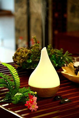 SPT Ultrasonic Essential Oil Diffuser White / Bamboo SA-110