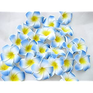 Sealike 100 Pcs Diameter 2.4 Inch Artificial Plumeria Rubra Hawaiian Flower Petals for Wedding Party Decoration with Stylus 2