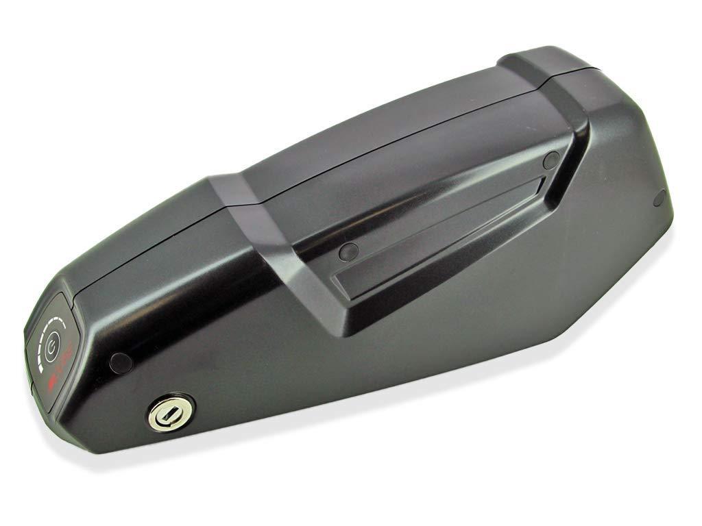 Excalibur Alber Xion - Batería de Repuesto para Bicicleta de ...