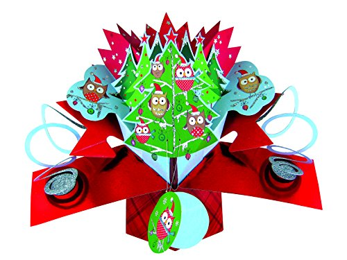 Christmas Trees Direct Uk - Second Nature Owls In Trees Christmas Pop-Up Cards New 3D Pop Ups Original Xmas Card Owl