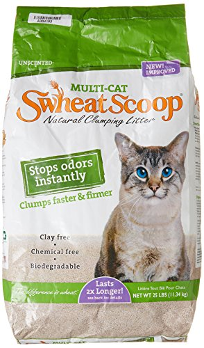 Swheat Scoop, Multi Cat Litter, 25 lb (Alternative To Clay Cat Litter compare prices)