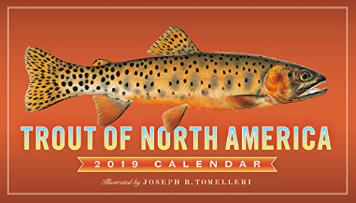 """Trout of North America Wall Calendar 2019 [14"""" x 8"""" Inches]"""