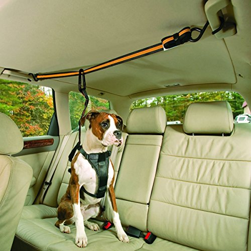Adorrable Dog Seat Belt Adjustable Safety Attachable Automobile Vehicle Car Restraint For Dog, Orange by Adorrable
