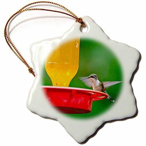 Hummingbird Gold Feeder (Vehfa Snowflake Ornament Birds Minnesota, Ruby-Throated Hummingbird Perched Feeder inch Snowflake Porcelain Ornament)
