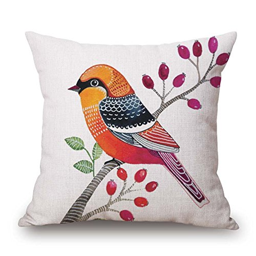 [Uloveme The Bird Pillowcase Of ,16 X 16 Inches / 40 By 40 Cm Decoration,gift For Dinning Room,kids Room,her,deck Chair,car Seat (2] (Oriole Bird Costume)