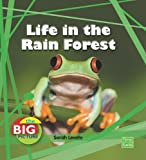 Life in the Rain Forest, Anita Ganeri and Sarah Levete, 1429655259