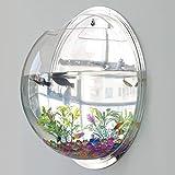 Acrylic Wall Mount Hanging Fish Bowl Aquarium Tank Goldfish...