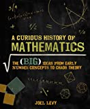 img - for A Curious History of Mathematics: The Big Ideas from Early Number Concepts to Chaos Theory book / textbook / text book
