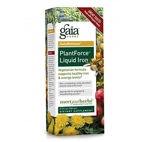 Gaia Herbs Liquid Herbal Iron Bottle, 8.5 Fl. Oz (4 Pack) Review