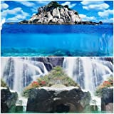 24''(L) x 19''(H) Double Sided Aquarium Background