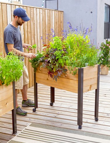 Self Watering Cedar Raised Garden Bed, Standing Garden