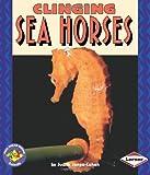 Clinging Sea Horses, Judith Jango-Cohen, 0822537672