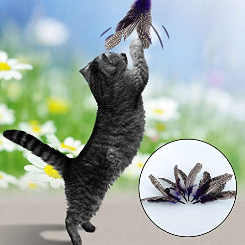 Agordo New Quality Pet 5X Refills for Da Bird Feather Wand Cat Toys Refill 8.7