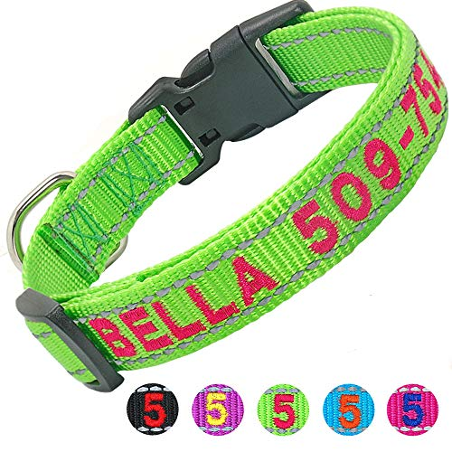 Didog Personalized Embroidered Dog Collar with Pet Name & Phone Number, Reflective Custom Dog Collar for Small Medium Large Dogs,Green Collar,Hot Pink Thread