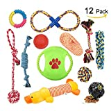 Aipper Dog Puppy Toys 12 Pack - Puppy Chew Toys for Playtime and Teeth Cleaning - IQ Treat Ball Squeak Toys and Dog Frisbee Included - Puppy Teething Toys for Medium To Small Dogs - (Assorted Colors)