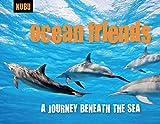 Ocean Friends: A Journey Beneath the Sea (KUBU)