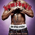 Homeboys: Gay Urban Erotica | Shane Allison