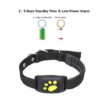 CRYSNERY Mascota Rastreador GPS Perro Gato Collar Impermeable Carga por USB GPS con función de devolución de Llamada para Mascotas Perro Gato: Amazon.es: ...