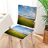 Mikihome Beautiful Chair Cushion Rice Fields Under The Sun Indoor and Outdoor Cushion Mat:W17 x H17/Backrest:W17 x H36