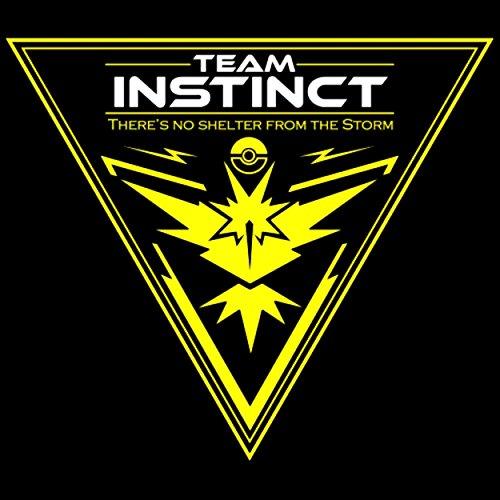 Pokemon Go Yellow Team Instinct Car Wind Buy Online In Brunei At Desertcart