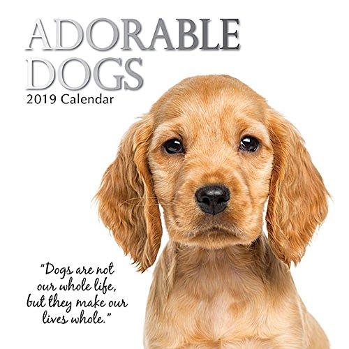 Adorable Dogs 2019 Calendar ()