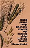 With its clear, easy-to-use format, accurate line drawings, and concise descriptions, Edward Knobel's Field Guide can help make you an expert at identifying the common grasses, sedges, and rushes of the United States. Over 370 of the most common s...