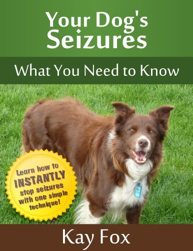 Your Dog's Seizures - What You Need to Know