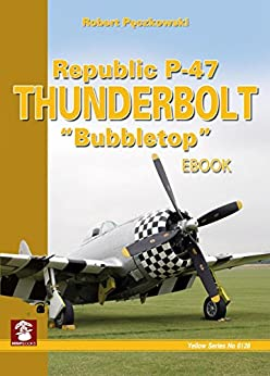"Republic P-47 Thunderbolt ""Bubbletop"" (Yellow Series) by [Pęczkowski, Robert]"
