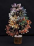 Crocon Gemstone Money Tree | Feng Shui Bonsai