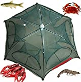 light blue lead rope - Fishing Bait Net Trap Cast Dip Cage Crab Fish Minnow Crawdad Shrimp Foldable NEW