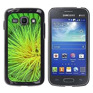 TopCaseStore / la caja del caucho duro de la cubierta de protección de la piel - Plant Nature Forrest Flower 105 - Samsung Galaxy Ace 3 GT-S7270 GT-S7275 GT-S7272