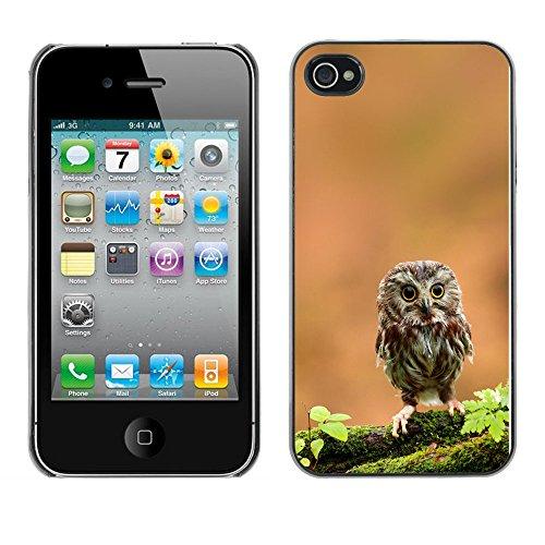 Omega Case PC Polycarbonate Cas Coque Drapeau - Apple iPhone 4 / 4S ( The Curious Cute Owl )