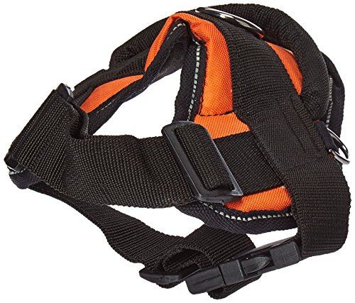 dean and tyler harness small - 5