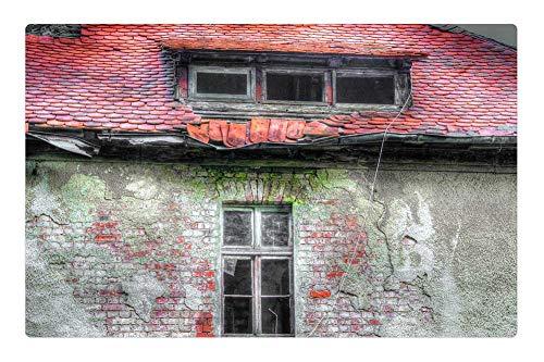 Tree26 Indoor Floor Rug/Mat (23.6 x 15.7 Inch) - Roof Old Beaver Tails Red Brick Window Moss Home (Tile Beaver)