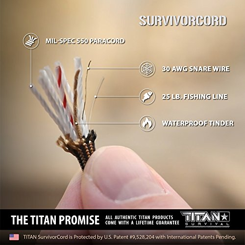Titan 550 Paracord/550 Cord/Survival Cord | Desert TAN | Patented U.S. Military Type III 100% Nylon Parachute Cord (3/16
