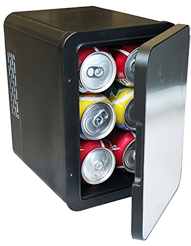 ANGEL USA Angel Portable 6 Can Mini Fridge Car Cooler/Warmer 4L w/Removable Shelf Great for Home, Office, Travel, Car, RV, Boat, BBQ, AC & DC 12V/110V, Stainless Steel Front by ANGEL USA