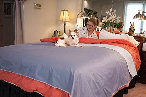 Silly Legacy Reversible Waterproof Protective Cover or Liner for Bed or Couch, for Dogs and Cats, Queen (82 x 74)