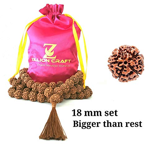 (Himalayan Organic Rudraksha Mala with Bigger Size 16-18 MM and 108 +1 Prayer Guru Beads. Grown up in high Himalaya of Nepal Without Chemical,Wax and Color Treatment Good for Puja,Yoga, Meditation.)