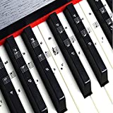IHUKEIT Keyboards & Pianos