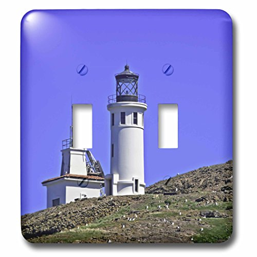 3dRose Boehm Photography Travel - Lighthouse on Anacapa Island - Light Switch Covers - double toggle switch (lsp_282363_2) by 3dRose