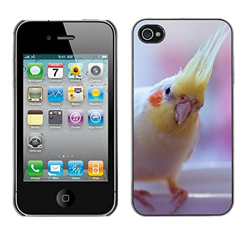 Premio Sottile Slim Cassa Custodia Case Cover Shell // F00000084 oiseau // Apple iPhone 4 4S 4G