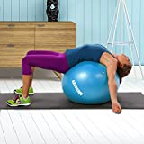 YOGU Stability Exercise Ball 65cm Balance Ball