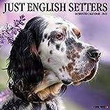Just English Setters 2021 Wall Calendar (Dog Breed Calendar)