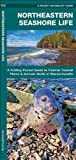 Northeastern Seashore Life, James Kavanagh, 1583551603