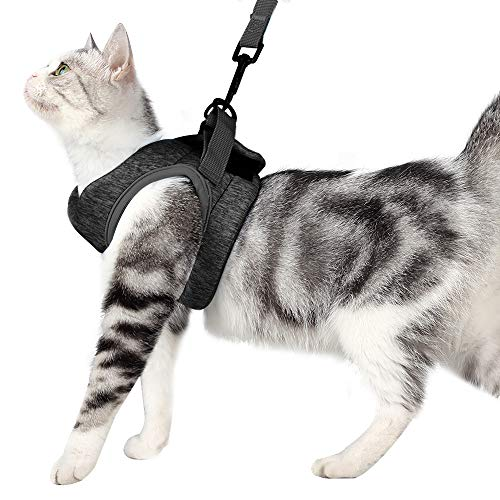 Yult Cat Harness Ultra-Light Kitten Straps Soft and Comfortable Cat Walking Jacket with Running Cushioning and Anti-Escape Suitable for Puppies Rabbits with Cationic Fabric (M, Grey)