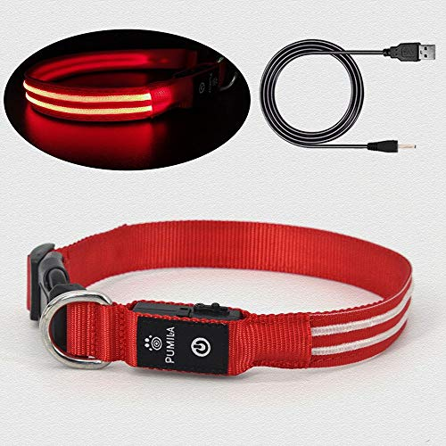 Rechargeable Led Dog Collar – 100% Waterproof Light Up Dog Collar, Safety Pet Collar – Flashing Light Collar for Small…