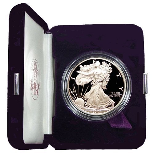 2007 Proof American Eagle Silver Dollar with Original Packaging & Certificate of Authenticity.