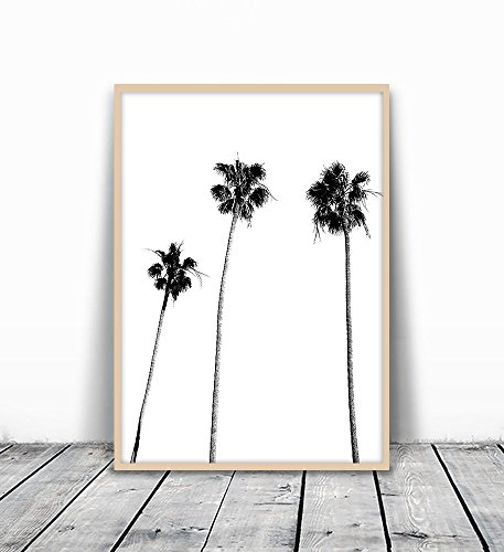 Palm Tree Print, Palm Print, Palm Tree Photography, Black and White, Palm, Palm Tree, Tropical Wall Art, Tropical Decor, Wall Decor, Black and White Palm Tree, Black Palm Tree, Minimalist, 8x10