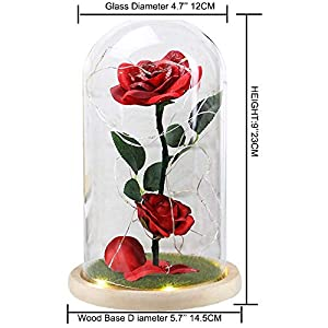 URBANSEASONS Beauty and The Beast Rose Enchanted Rose,Red Silk Rose and Led Light with Fallen Petals in Glass Dome on Wooden Base, for Valentine's Day Wedding Anniversary Mother's Day Birthday Party 10